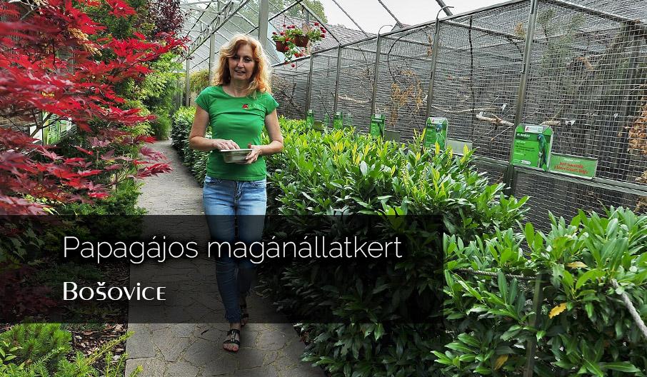 Papagáj állatkert egy cseh faluban