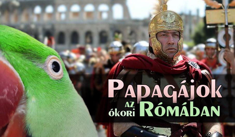 Papagájok az ókori Rómában