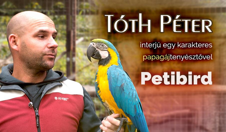 Tanulságos interjú Tóth Péterrel a papagájokról