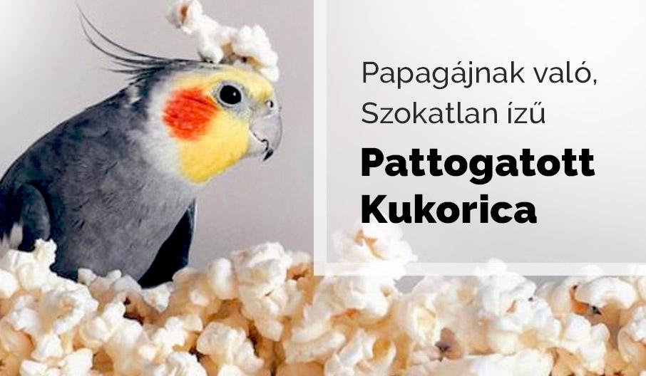 Papagáj Popcorn